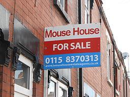 Mouse_House_estate_agents_sign,_Carron_Street,_Fenton