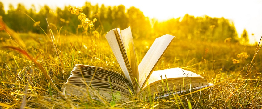 open book with fanned pages in a field
