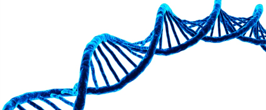 Image showing DNA