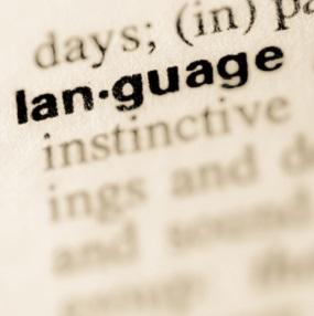 IGCSE English Language, Dictionary image of the word langauge